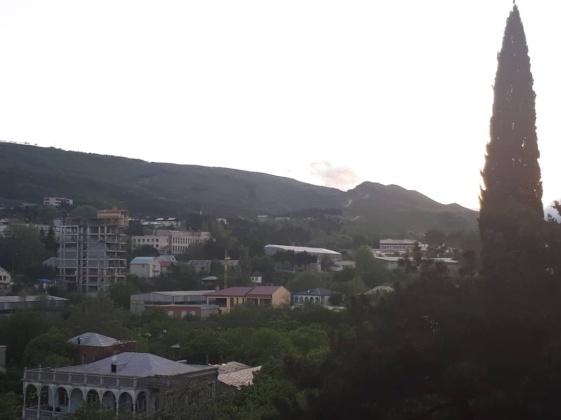 Marshal Gelovani Avenue, Tbilisi, 2 Bedrooms Bedrooms, ,1 BathroomBathrooms,Apartment,For Sale,Marshal Gelovani Avenue,1160
